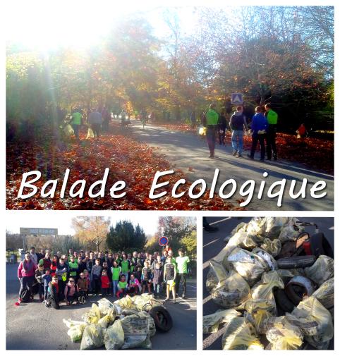 2018-11-balade-ecologique